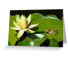 The Lily and the Frog Greeting Card