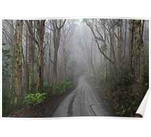 The Road to Mt Toolebewong Poster