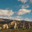 Omarama Clay Cliffs  by Werner Padarin