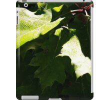 Dew Drops on Leaves iPad Case/Skin