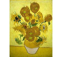 Sunflowers - Vincent van Gogh (1888) Photographic Print