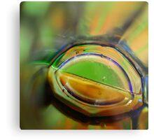 Through A Glass Brightly Metal Print