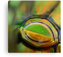 Through A Glass Brightly Canvas Print