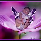 Baby fairy dreams :) by Christie  Moses
