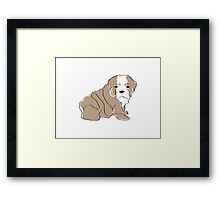 Bulldog Pup Framed Print