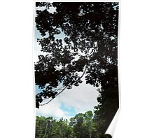 Clouds and Trees in Boothbay Poster