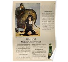 Advertisements Photoplay Magazine July through December 1921 0088 Plamolive Poster