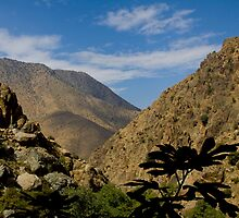 Ourika Valley, Morocco by Neil Clarke