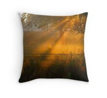 Never Again ! Throw Pillow