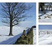 A White Christmas - Saddleworth Moor by Chris Goodwin