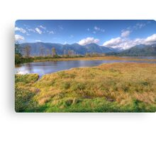 Grant Narrows Landscape Canvas Print