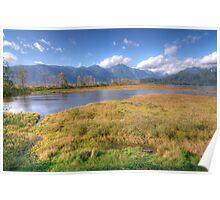 Grant Narrows Landscape Poster