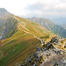 Tatra Mountains national park in Zakopane by Dfilyagin