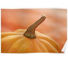ohhhh pumpkin! Poster