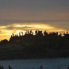 SUN SET ON BEACH by madhusoodanan
