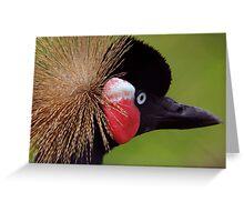 Crowned Crane Greeting Card
