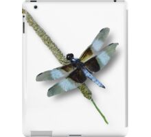 The Dragon has Landed iPad Case/Skin