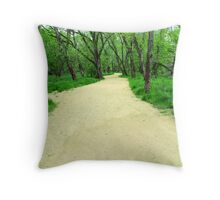 The long & winding road Throw Pillow