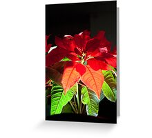 Light is in each of us - let it come out Greeting Card