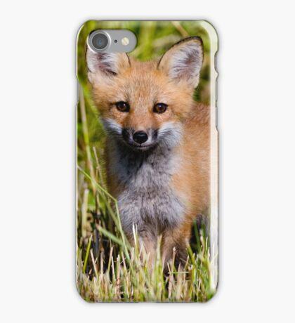 Fox Kit 2 iPhone Case/Skin