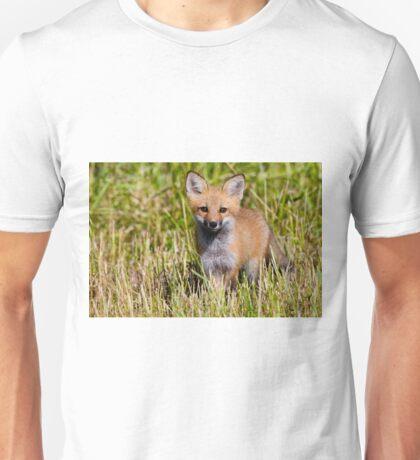 Fox Kit 2 Unisex T-Shirt