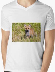 Fox Kit 2 T-Shirt
