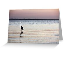 Sanibel Sunrise Greeting Card