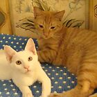 Scooter and Alex by gypsy2009
