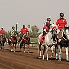 Heading Towards the Starting Gates by Buckwhite