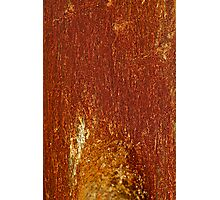 """Psychedelic bizzare landscape of rusty. """"Rusty Cage"""" by Johnny Cash & Brown Sugar . Photographic Print"""