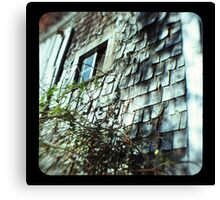 TTV- the old barn revisited Canvas Print