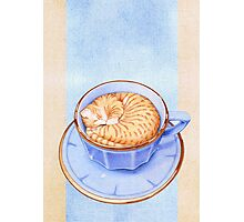 Cat in Coffee Photographic Print