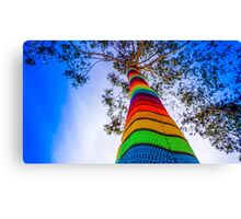 Yarn Bombed Tree, Swanston Street, Melbourne Canvas Print