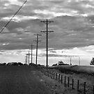 Stormy Skies by Lisa Knechtel