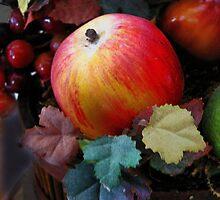 Apple  by Savannah Gibbs