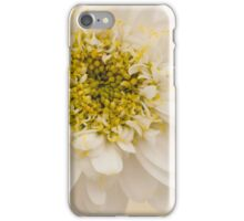 White Mini Chrysanthemum Macro iPhone Case/Skin
