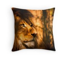 Magestic Pride - Adelaide Zoo Throw Pillow