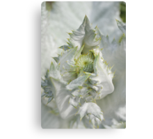 The Cosy Thistle Canvas Print