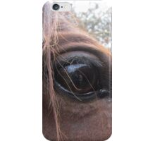 From A Horse's Point Of View iPhone Case/Skin