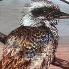 Painted Kookaburra by Jeffrey Hamilton