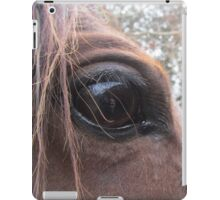 From A Horse's Point Of View iPad Case/Skin
