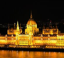 The Houses of Parliament by Night in Budapest, HUNGARY by Atanas Bozhikov NASKO