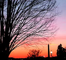 Capitol Hill Sunset by claibornepage