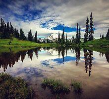 Mt Rainier Reflected in Tipsoo Lake by Jonicool