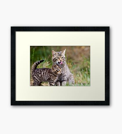 Kit and Cat Framed Print