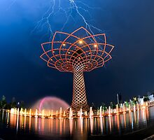 Tree of Life by Luca Renoldi