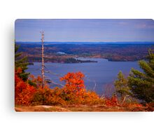 Valley of the Trees Canvas Print