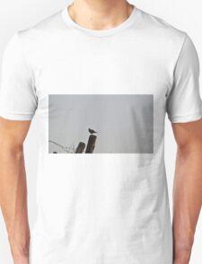 Morning song of the lark Unisex T-Shirt
