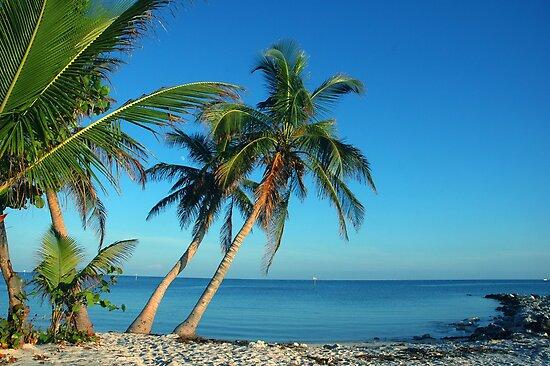 The Blue Lagoon, Key West, FL by Susanne Van Hulst