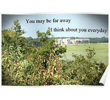 Plant Scene Poster